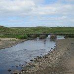 Bushfoot Strand