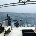 Sea Ventures Dive Center Foto