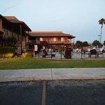 Super 8 Lindsay Olive Tree Foto