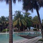 Photo de Flamingo Bay Hotel & Marina