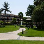 Photo of JA Palm Tree Court