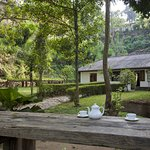 Kandy Cottage - An Oasis Amidst Chaos