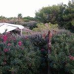 Photo de Ibis Hyeres Plage Thalassa