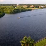 DoubleTree Suites by Hilton Tampa Bay Foto