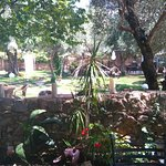 Photo de Aroma Cafe & Secret Garden