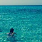 Photo of Il Turistico