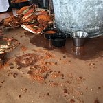 best crabs EVER!