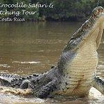 Photo de Jungle Crocodile Safari