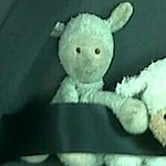 My son lost his lamb in room i102 at Esmeralda Park. PLEASE if anyone finds it, hand in to recep