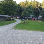 Twin Pines onTrout Lake Foto