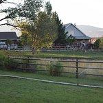 Cowboy Homestead Cabins Foto