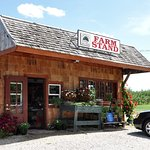 Lapsley Orchard - Pomfret, CT - Farm Stand