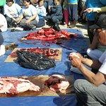 Canada Day, seal cutting contest