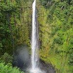 Akaka falls close by