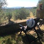 Pieve di Caminino Historic Farm Foto