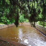 Ruisseau du domaine