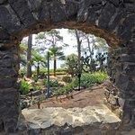 Foto de Jardín Botánico de Cap Roig