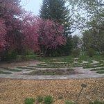 Meditative labyrinth walking path