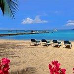 Oualie Beach Resort, Nevis Hotel
