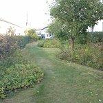 Giardino in terrazza