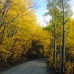 Fall on Boreas Pass