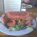 Crab tea!!!!