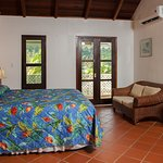 Spacious, clean Caribbean style rooms