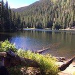 Beaver Lake Trail Foto