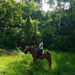 Foto de Discovery Horseback Tours