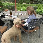"My wife with ""Syrah"", the winery dog"