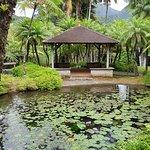 Balata Gardens Foto