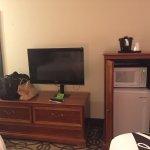 Fridge, microwave, and TV
