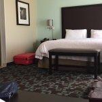 Foto de Hampton Inn & Suites Nashville @ Opryland