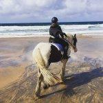 Foto de Mountain View Horse Riding Centre