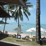 Foto de Samui Palm Beach Resort & Hotel