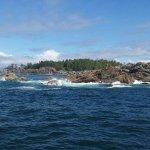 Photo de Archipelago Wildlife Cruises