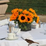 Beautiful for weddings -- this was our outdoor brunch table.