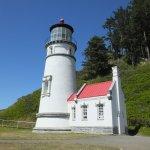 Heceta Head Lighthouse صورة فوتوغرافية