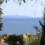 Blick in die Bucht von Alcúdia