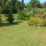 großer Garten mit Ausblick