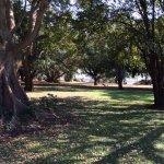 Foto de Letaba Rest Camp