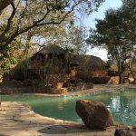 Lovely experience at Mabula Game Lodge  Brilliant interaction with animals in a very sustainable