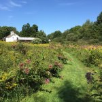 Photo de Saratoga Farmstead B&B
