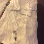 Bath robe :)