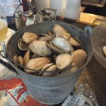 Large bucket of steamers