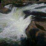 Foto de Ohiopyle State Park