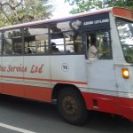 Local bus, cheap and reliable