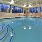 Foto di Holiday Inn Express Hotel & Suites Detroit-Novi