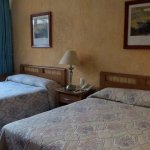 Photo of Hotel Calli