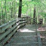 Hemlock Bluffs Nature Preserve
